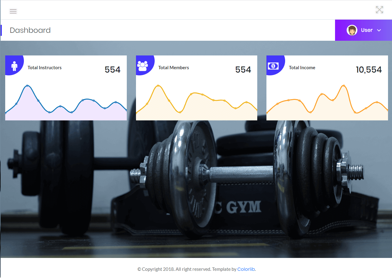 Gym Management Dashboard