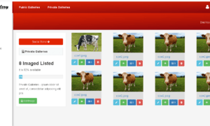 Image Gallery Web Application in PHP and Bootstrap - Front-End