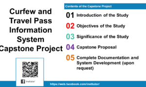 Curfew and Travel Pass Information System Capstone Project